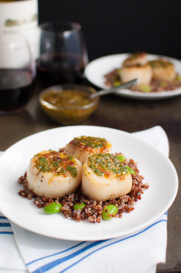 Perfectly pan seared scallops drizzled with chermoula, a Moroccan sauce flavored with cumin, paprika, cilantro, parsley, garlic and lemon juice.   tamingofthespoon.com