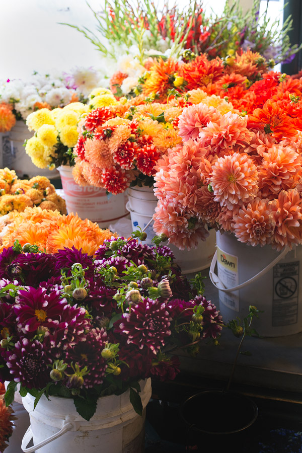 Flowers at Pike Place Market. | tamingofthespoon.com