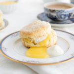 Cream scone, lemon curd, and whipped cream on a china plate.